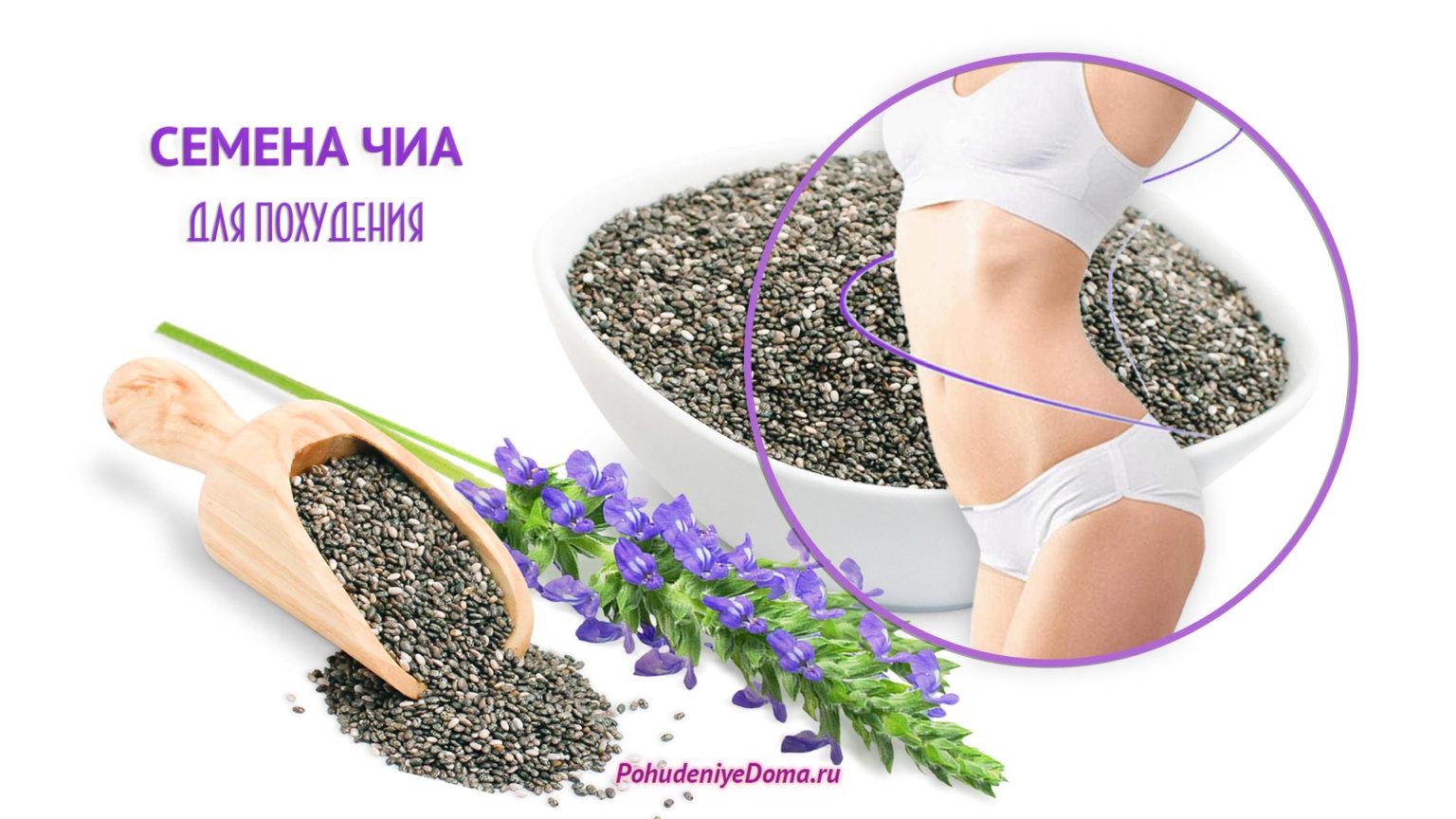 семена чиа для похудения где купить